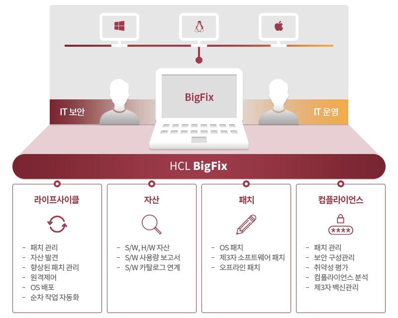 IBM BigFix LifeCycle